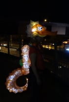 013_Seahorse_lit_cool