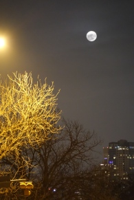 Full Christmas Moon