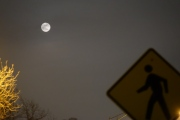Full Christmas Moon & Sign