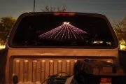 Zilker Tree Reflected in Pickup Rear Window