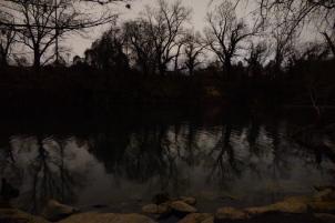 Reflection Barton Creek